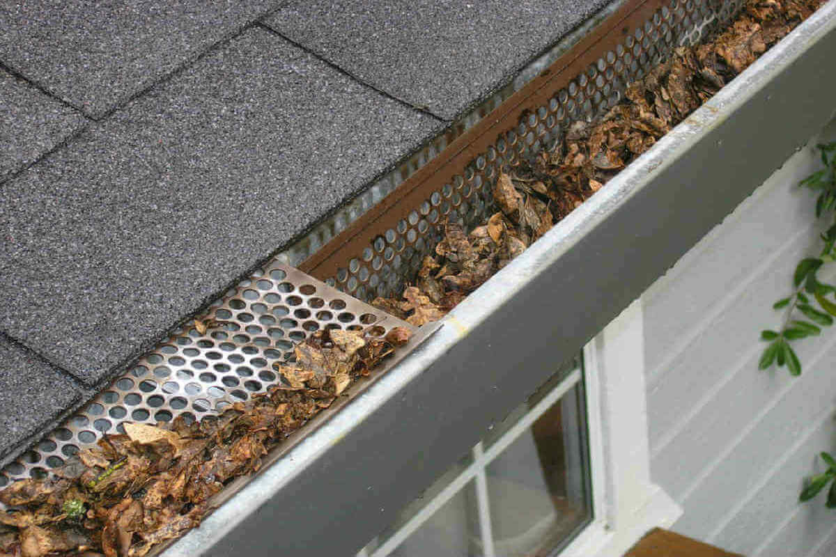 The Importance Of Cleaning Your Gutters Oregon Roof Guys