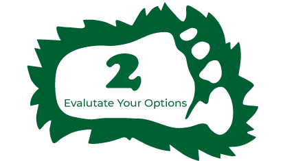 Step 2 - Evaluate Your Options